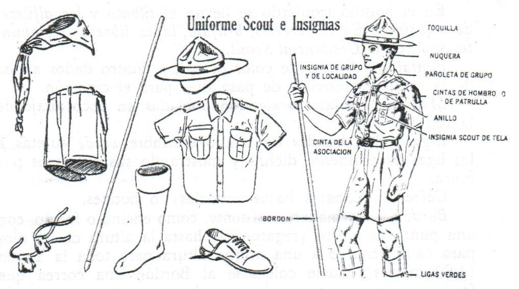 Descargas scouts de méxico grupo 24